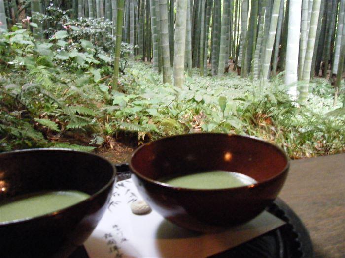 竹林と抹茶
