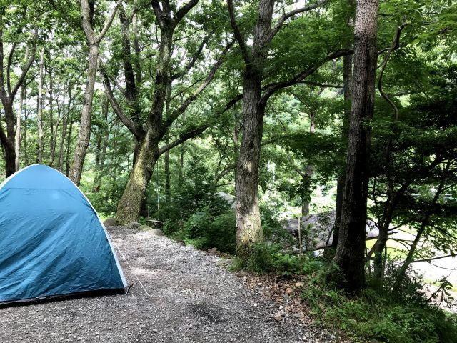 1.ホタルが見れる!豊かな自然のなかでのキャンプ