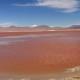 フラミンゴがたくさん!鮮やかな4種の湖と赤い湖ラグナ・コロラダ in ウユニ/ボリビア